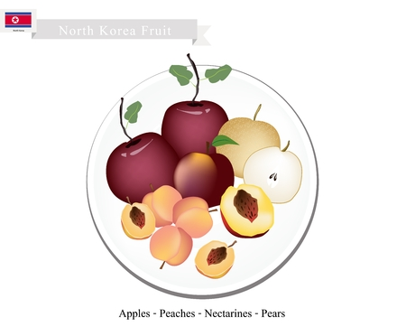korean national: North Korea Fruits, Illustration of Delicious Apple, Peach, Nectaeines and Pear. Popular Fruits in North Korea.