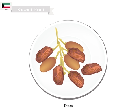 peninsula: Kuwait Fruit, Illustration of Bowl of Dried Dates. The Most Popular Fruits of Arabian Peninsula.