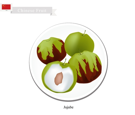 date fruit: Chinese Fruit, Illustration of Jujube or Chinese Date. One of Most Popular Fruits in China.
