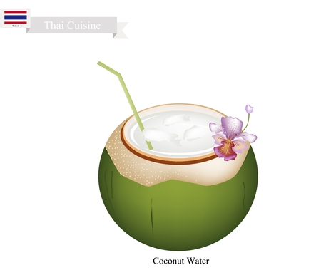 coconut water: Thai Cuisine, Fresh Coconut Water Drink. One of The Most Popular Drink in Thailand.