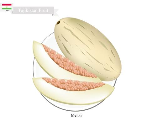 tajikistan: Tajikistan Fruit, Ripe and Sweet Melon. One of The Most Popular Fruits of Tajikistan. Illustration