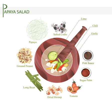 thai herb: Cuisine and Food, 11 Ingredients Green Papaya Salad with Fermented Salted Crabs. One of The Most Popular Dish in Thailand.