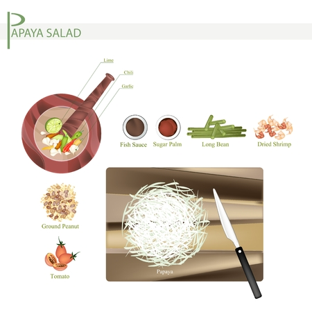 dried: Cuisine and Food, 11 Ingredients Green Papaya Salad with Dried Shrimps. One of The Most Popular Dish in Thailand. Illustration