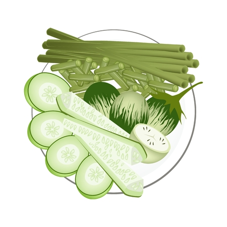 long beans: Vegetable, Illustration of Green Eggplants, Cucumbers and Chinese Long Beans Isolated on White Background.