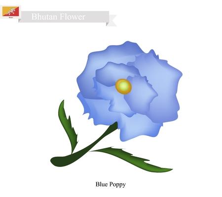 opium poppy: Bhutan Flower, Illustration of Blue Poppy, Himalayan Poppy, or Meconopsis Sheldonnii Flower. The National Flower in Bhutan. Illustration
