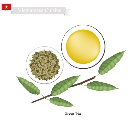 steam of a leaf: Vietnamese Cuisine, Traditional Green Tea and Boiled Water. A Popular Beverage in Vietnam.