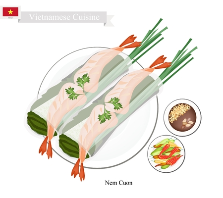 Vietnamese Cuisine, Nem Cuon or Traditional Spring Rolls Filled with Vegetable and Prawns. One of The Most Popular Dish in Vietnam. Illustration