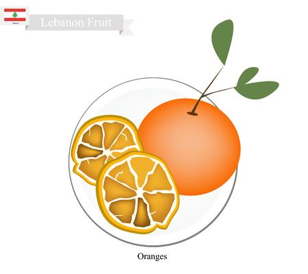 national fruit of china: Lebanon Fruit, Illustration of Orange. One of The Most Popular Fruits in Lebanon. Illustration