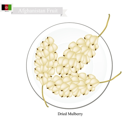 dried: Afghanistan Fruit, Dried Mulberry. One of The Most Popular Fruits of Afghanistan. Illustration