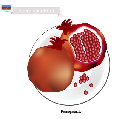 national fruit of china: Azerbaijan Fruit, Ripe and Sweet Pomegranate. One of The Most Popular Fruits of Azerbaijan. Illustration