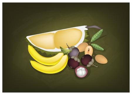 king thailand: Fruits, Illustration of Delicious Mangosteens, Banana, Durian and Sapodilla on Green Chalkboard.