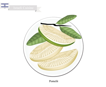national fruit of china: Israel Fruit, Illustration of Ripe and Sweet Pomelit. One of The Most Popular Fruits in Israel.