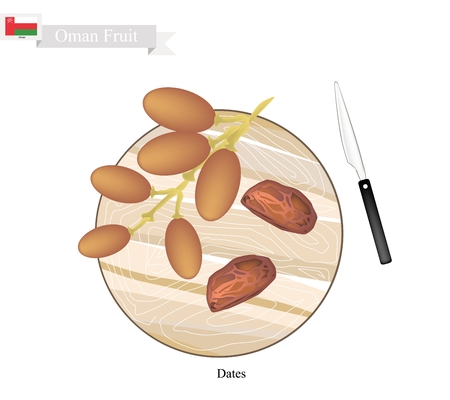 dates fruit: Oman Fruit, Illustration of Dried Dates. The Most Popular Fruits of Arabian Oman.