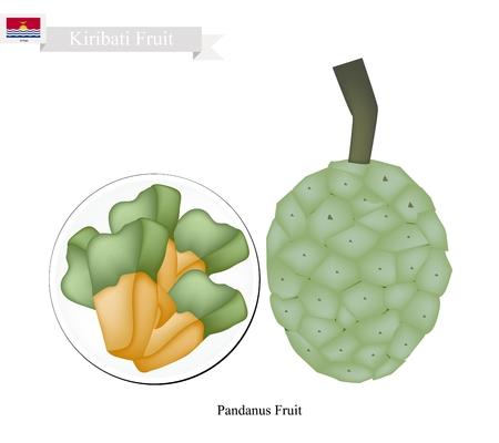 pine  fruit: Kiribati Fruit, Screw Pine, Pandanus Tectorius or Pandanus Odoratissimus. The Native Fruit in Kiribati.