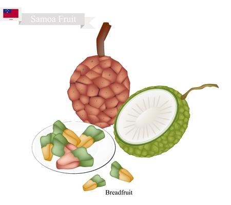 pine  fruit: Samoa Fruit, Screw Pine, Pandanus Tectorius or Pandanus Odoratissimus. A Native Fruit of Samoa.