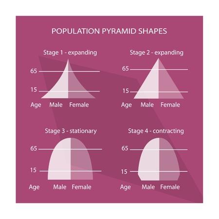 demografia: Población y Demografía, Ilustración Conjunto de 4 Tipos de pirámides de población Gráfico o Gráfico Edad Estructura.