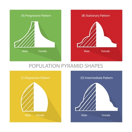 demography: Population and Demography, Illustration Set of Four Types of Population Pyramids Chart or Age Structure Graph.