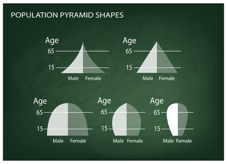 hape: Population and Demography, Illustration Set of 5 Types of Population Pyramids Chart or Age Structure Graph on Chalkboard Background.