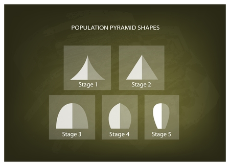 demography: Population and Demography, Illustration Set of 5 Types of Population Pyramids Chart or Age Structure Graph on Chalkboard Background.