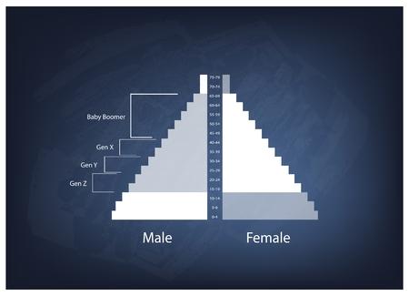demografia: Poblaci�n y Demograf�a, Poblaci�n Gr�fico Ilustraci�n de pir�mides o Edad Gr�fico Estructura con Baby Boomers Generaci�n, Generaci�n X, Generaci�n Y y Z. Gen Vectores