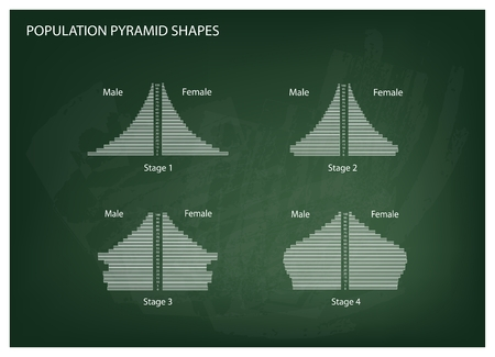 hape: Population and Demography, Illustration Set of 4 Types of Population Pyramids Chart or Age Structure Graph on Chalkboard Background. Illustration