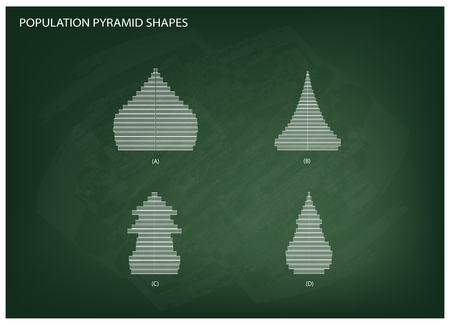 demography: Population and Demography, Illustration of 4 Types of Population Pyramids Chart or Age Structure Graph on Chalkboard Background.