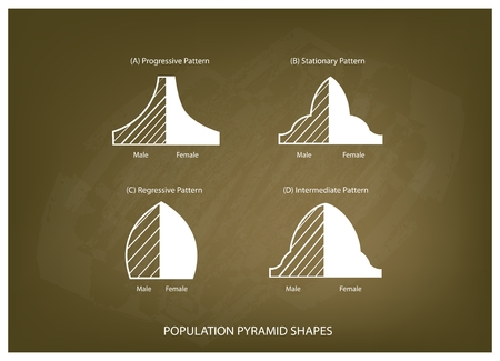 demography: Population and Demography, Illustration Set of 4 Types of Population Pyramids Chart or Age Structure Graph on Chalkboard Background. Illustration