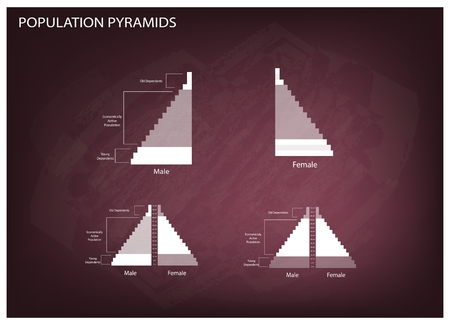demography: Population and Demography, Illustration of Detail of Population Pyramids Chart or Age Structure Graph on Chalkboard Background.