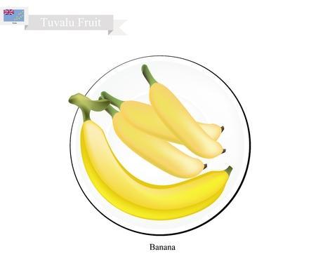 tuvalu: Tuvalu  Fruit, Illustration of Golden Banana. One of The Most Popular Fruits in Tuvalu. Illustration