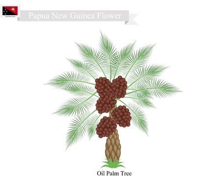 Nuova Guinea: Papua New Guinea Tree, Illustration of Coconut Tree. The Native Tree of Papua New Guinea.