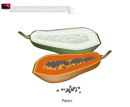 new guinea: Papua Nuova Guinea, frutta, illustrazione di papaia. Uno dei frutti più popolari in Papua Nuova Guinea.