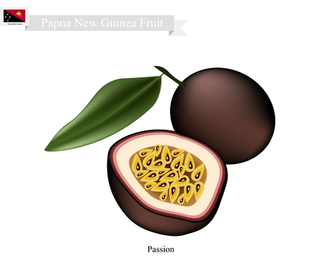 papua new guinea: Papua New Guinea Fruit, Illustration of Maracuja or Passion Fruit. One of The Most Popular Fruits in Papua New Guinea.