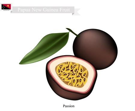 Nuova Guinea: Papua Nuova Guinea, frutta, illustrazione di Maracuja o frutto della passione. Uno dei frutti pi� popolari in Papua Nuova Guinea.