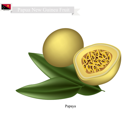 papua new guinea: Papua New Guinea Fruit, Illustration of Maracuja or Passion Fruit. One of The Most Famous Fruits in Papua New Guinea.