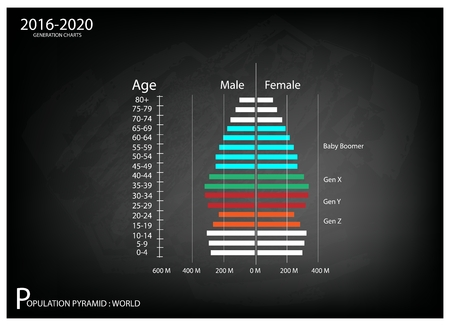 pyramidal: Population and Demography, Illustration of Population Pyramids Chart or Age Structure Graph with Baby Boomers Generation, Gen X, Gen Y and Gen Z in 2016 to 2020.