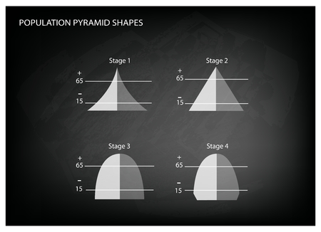 demography: Population and Demography, Illustration Set of 4 Types of Population Pyramids Chart or Age Structure Graph on Black Chalkboard Background. Illustration