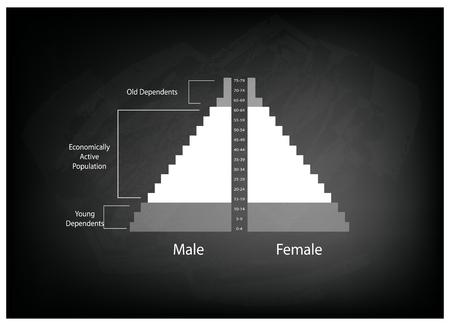 demografia: Población y Demografía, Ilustración de Detalle de la población Pirámides Gráfico o Gráfico Edad Estructura en el fondo Negro pizarra.