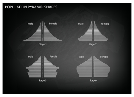 gen: Population and Demography, Illustration Set of 4 Types of Population Pyramids Chart or Age Structure Graph on Black Chalkboard Background. Illustration