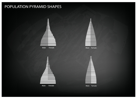 demography: Population and Demography, Illustration of 4 Types of Population Pyramids Chart or Age Structure Graph on Black Chalkboard Background. Illustration