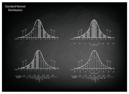 bell curve: Business and Marketing Concepts, Illustration of Gaussian Bell Curve Chart or Normal Distribution Curve Graph on Black Chalkboard Background.