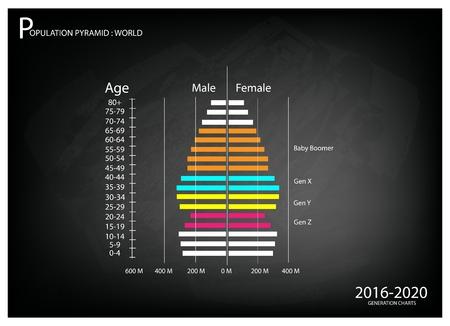인구와 인구, 2,020에서 2,016 사이에 베이비 붐 세대 세대, 세대 X, Y 세대와 세대 Z와 인구 피라미드 차트 또는 연령 구조 그래프의 그림입니다.