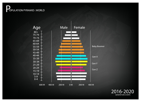 boomers: Population and Demography, Illustration of Population Pyramids Chart or Age Structure Graph with Baby Boomers Generation, Gen X, Gen Y and Gen Z in 2016 to 2020.