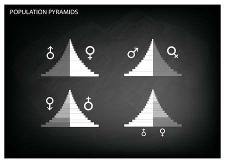 demography: Population and Demography, Illustration of Detail of Population Pyramids Chart or Age Structure Graph on Black Chalkboard Background. Illustration
