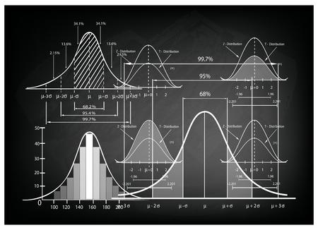 ビジネスやマーケティングの概念、サンプル サイズを決定するための標準偏差図、ガウス ベルまたは正規分布曲線の人口ピラミッド グラフのイラ  イラスト・ベクター素材