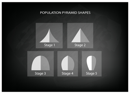demography: Population and Demography, Illustration Set of 5 Types of Population Pyramids Chart or Age Structure Graph on Black Chalkboard Background.