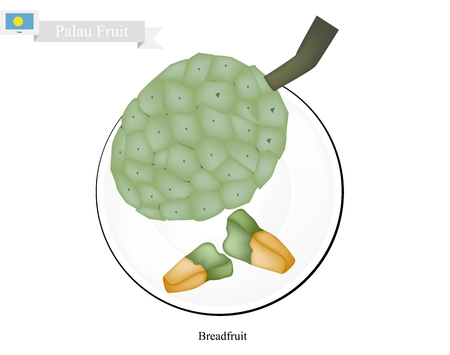 palau: Palau Fruit, Screw Pine, Pandanus Tectorius or Pandanus Odoratissimus. The Native Fruit in Palau. Illustration