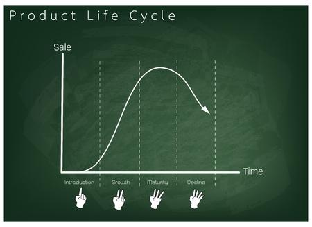Negocios y Marketing Concepts, Etapa 4 del gráfico del ciclo de vida del producto en verde pizarra.