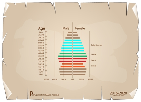 demography: Population and Demography, Population Pyramids Chart or Age Structure Graph with Baby Boomers Generation, Gen X, Gen Y and Gen Z in 2016 to 2020 on Old Antique Vintage Grunge Paper Texture Background. Illustration