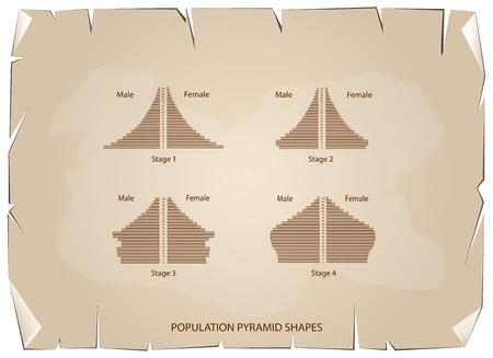 contracting: Population and Demography, Illustration Set of 4 Types of Population Pyramids Chart or Age Structure Graph on Old Antique Vintage Grunge Paper Texture Background.