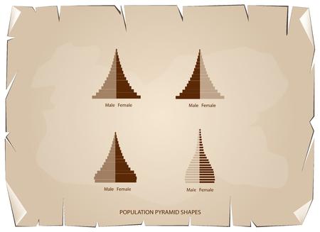 demografia: Población y demografía, ilustración de 4 tipos de pirámides de la población Gráfico de la carta o de la estructura de la edad en viejo fondo antiguo de la textura del papel de Grunge de la vendimia.